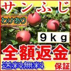 ポイント10倍産地直送 長野産 減農薬 有機肥料使用 サンふじ ご家庭用 約9kg24〜50個入 完熟 林檎 リンゴ りんご
