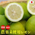 訳あり 国産 無農薬 レモン 5kg 国産 愛媛 大三島 又は 広島   瀬戸内 ore NN 5t