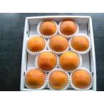 糖度22度 返金保証 和歌山 柿 新秋柿 2L 10玉 約2.2kg 化粧箱 贈答用 SSS