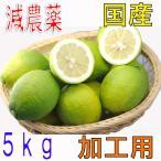 訳あり 減農薬 愛媛 レモン 5kg 加工用 国産 瀬戸内 大三島 ore SSS 5t