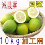【10月以降分予約】訳あり 減農薬 愛媛 レモン 10kg 加工用 国産 瀬戸内 大三島 ore SSS 10g
