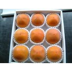 2021年分予約 糖度22度 返金保証 柿 和歌山 新秋柿 訳あり 3L 大玉9玉 約2.3kg S10 9t