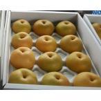 低農薬 岡山産 梨 詰め合わせ 約5キロ 3L 大玉12玉入 贈答用 和梨 産地直送