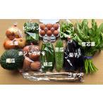 九州佐賀の農家直送野菜セット・送料無料・10品詰め合わせ+こだわりのたまご