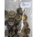 中国産 乾燥椎茸 1kg(個3.5-4cm)×10P(P2230円税別)業務用 ヤヨイ 各サイズ下記にて記載中