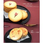 贈答 ギフト 和菓子 セットでお得!桜スイーツセット (久保桜クッキー&置賜さくら回廊) 「全国一律送料込」