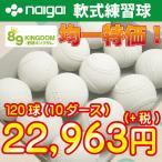 軟式ボール/ ナイガイ A・B・C号練習球 【練習球24,800円均一】 (検定落ち)10ダース(120球)
