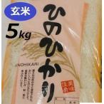 令和元年度 新米 玄米 5kg ヒノヒカリ 兵庫県産有機