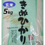 新米 玄米 5kg キヌヒカリ 令和元年産 兵庫県産有機