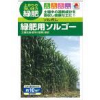 ソルガム(緑肥用)緑肥用ソルゴー タキイの種 約10平方メートル分 緑肥