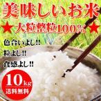 米 10kg お米 カルローズ 10kg 送料無料※北海道・沖縄は別途756円