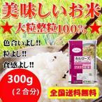 ポイント消化 送料無料 300  食品 米 お試し  白米 カルローズ(米国産)2合(300g)1kg未満 メール便 代金引換不可
