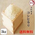 新米 令和元年産 お米 5kg 高知県産コシヒカリ 5kg1袋 安い 送料無料※北海道・沖縄・離島の方は別途756円かかります。