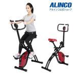 フィットネスバイク スピンバイク ダイエット ホースライダーバイク AFB4618 健康