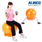 健康器具 バランスボール エクササイズボール55セット EXG124