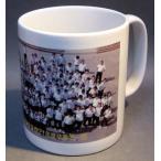 卒園記念品オリジナル写真転写マグカップ(12個〜) 卒業記念品卒団記念品先生への記念品卒業記念品