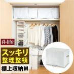 クローゼット 棚上 収納袋 M 1個 衣類用 ホワイト  棚上収納 衣装ケース 上 収納 収納ケース 小物収納 布団収納袋 衣類収納