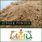 ジンジャーパウダー 100g 送料無料 Ginger Powder