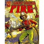 The Great Chicago Fire of 1871 (Disasters in History)