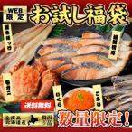 北海道お試し海鮮福袋 /送料込/蟹/鮭/魚卵/一夜干  数量限定 北海道 福袋 ギフト 贈答用 ふっこう