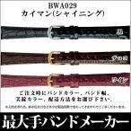 メール便可 時計バンド 時計ベルト日本最大手メーカーバンビ社 BAMBI  カイマン(シャイニング 10mm11mm12mm13mm14mm BWA029