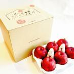 おうちでつくる りんごあめスウィーツキット りんご6個入