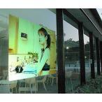 プロジェクタースクリーン リア投影型 フィルムスクリーン(粘着剤付き)115cm幅 RS-115n