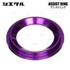 siecle シエクル ASSIST RING アシストリング ハイエース 200系 TRH# 2TR-FE 04/8〜 (RR03AP