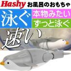 ハシートップイン スイミングペンギン  GY  HB-2919
