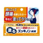 《小林製薬》 ズッキノンa軟膏 15g 【第3類医薬品】