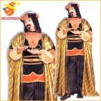 アラジン コスプレ ジャファー アラビアン 皇帝 ワイズマン アラビア 王様 衣装 大人用 ハロウィン コスチュームディズニー