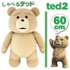 TED ぬいぐるみ テッド おもちゃ 人形 グッズ 実物大 60cm(24inch) R指定版 コモンウェルス社製