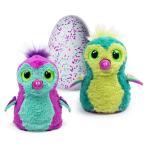 うまれて! ウーモ 海外版 ピンク ティール Hatchimals おもちゃ 孵化する 鳥 動物 ペット