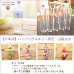 【16%OFF】【5本分】ハーバリウムお試しキット【お姫さま】(オイル1本、ガラス瓶5本、花材セット5種類)