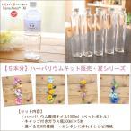 【5本分】ハーバリウムお試しキット【夏シリーズ】(オイル1本、ガラス瓶5本、花材セット5種類)