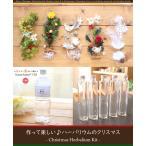 Yahoo!ハーバリウム花材のお店AcornStyle【5本分】【クリスマス】【22%OFF】ハーバリウムお試しキット(オイル1本、ガラス瓶5本、花材セット5種類)