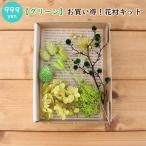 Yahoo!ハーバリウム花材のお店AcornStyle【グリーン】お買い得!花材キット
