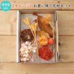 Yahoo!ハーバリウム花材のお店AcornStyle【オレンジ】お買い得!花材キット