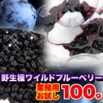 【食べながら目の保養に】野生種ワイルドブルーベリー100g メール便 送料無料!