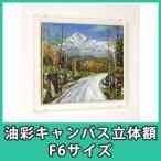 油彩キャンバス F6 額縁 壁掛け ケース ボックス 箱型 奥行 絵画 油絵 おしゃれ アクリル『油彩キャンバス立体額F6サイズ』