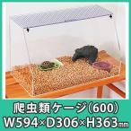 爬虫類 水槽 ケージ ケース おしゃれ 亀 カメ ハムスター カブトムシ クワガタ アクリル『カメ・爬虫類専用斜め水槽600』