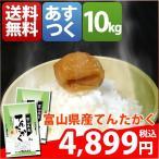 米 お米 10kg 富山県 新米 1等米 白米 てんたかく10kg 平成28年産 送料無料 北海道・沖縄・一部を除く