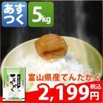 米 お米 5kg 富山県 新米 1等米 白米 てんたかく 5kg 平成28年産 送料無料 北海道・沖縄・一部を除く
