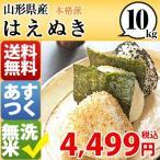 米 お米 10kg 山形県 米 1等米 無洗米 はえぬき 10kg 平成28年産  送料無料 北海道・沖縄・一部地域を除く