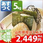 新米 米 はえぬき 5kg お米 1等米 29年産 山形県 無洗米 はえぬき 5kg 送料無料 北海道・沖縄・一部を除く