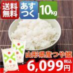 新米 米 つや姫 10kg お米 29年産 山形県 白米か玄米 つや姫 10kg 送料無料 北海道・沖縄・一部を除く