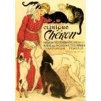 ポスター イタリア I.F.I  50×70 CHERON CR047 Clinique Cheron 広告 猫 犬 インテリア