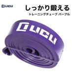 トレーニングチューブ フィットネス エクササイズ ストレッチ 筋トレ チューブ ゴム バンド パープル ハード(負荷:16〜39kg) LICLI