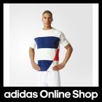 【全品送料無料中!】【公式】adidas アディダス UF SAL サッシュ Tシャツ