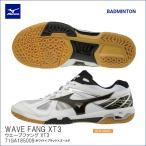 ミズノ(mizuno) バドミントンシューズ  ウェーブ ウエーブファング XT3  (WAVE FANG XT3) (71GA185009)